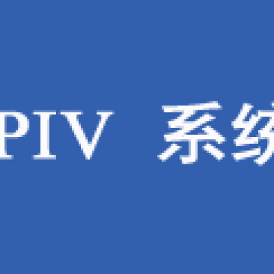 PIV系统